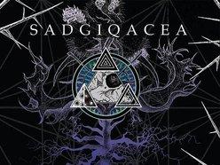 Image for SADGIQACEA (sad-juh-kay-sha)