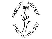 Nascent Descent