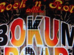 Image for Bokum Road