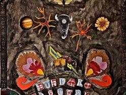 Image for Buffalo Electric