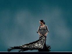 Image for Caminos Flamencos