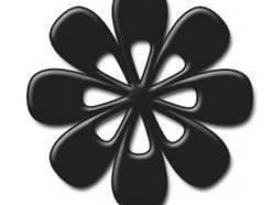 Image for Black Flower