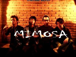 Image for Mimosa