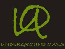 Underground Owls