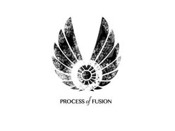 Image for Process of Fusion