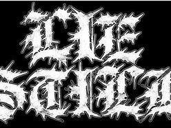Image for Lie Still