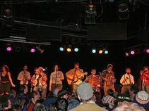 Como Avenue Jug Band