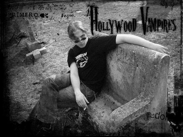 Image for The Hollywood Vampires