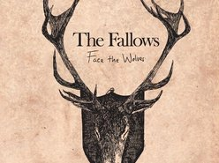 Image for The Fallows