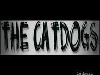 Image for The CatDogs