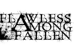 Image for Flawless Among the Fallen