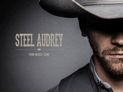 Image for Steel Audrey