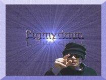 pigmydmm