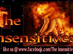 Image for The Insensitives
