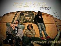 Clear Soul Forces