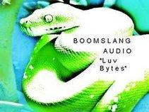 Boomslang Audio