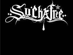 Image for DJ Suckafree