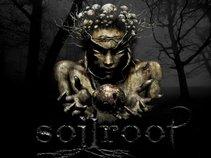 Soilroot