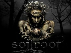 Image for Soilroot