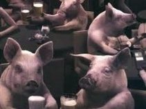 Filthy Pig Swine