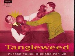 Image for Tangleweed