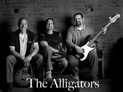 Image for The Alligators