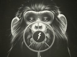 Image for Dirty Monkey