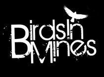 Birds in Mines