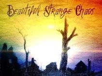 Beautiful Strange Chaos