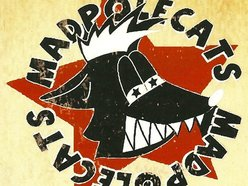 Image for The Madpolecats