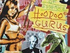 Image for Hoodoo Gurus