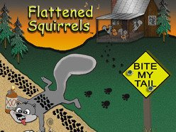 Image for FLATTENED SQUIRRELS