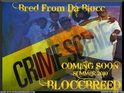 Image for Bloccbreed