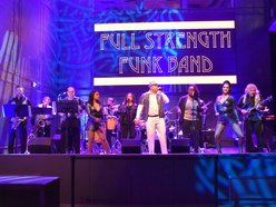 Image for The Full Strength Funk Band