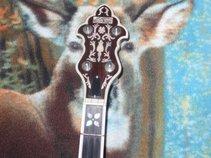 The Banjo Picker