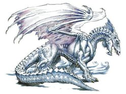 Dragon of Avaloch