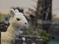 Cornelius Llama