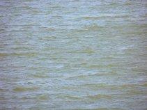 Schene Blaue Donau