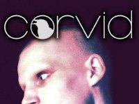 Corvid Magazine