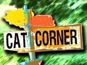 Cat Corner