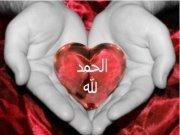 Abdo Elshafei
