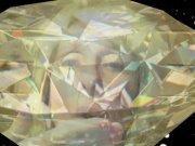 Adele Diamond