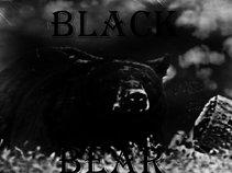 Mr Black Bear