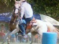 cowboy26