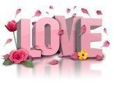 Amore Artii