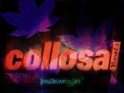 Collosal PhotoDesignbeatsvideos