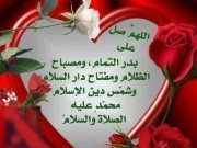 أبراهيم أبوزيد