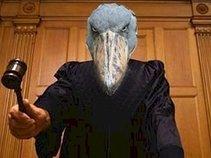 Judge Songbird