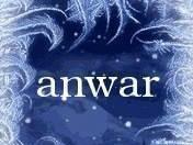 Anwar Al Euifi