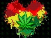 Grenouye Zen Reggae
